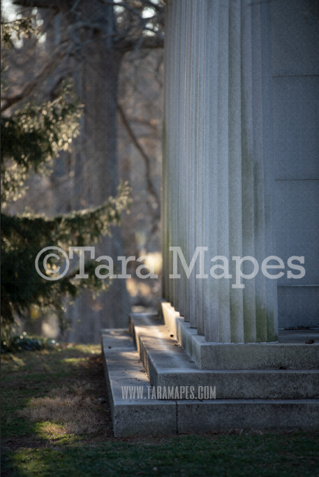 Mausoleum Building - Stairs in Natural Background - Old Architecture - Creamy Digital Background by Tara Mapes