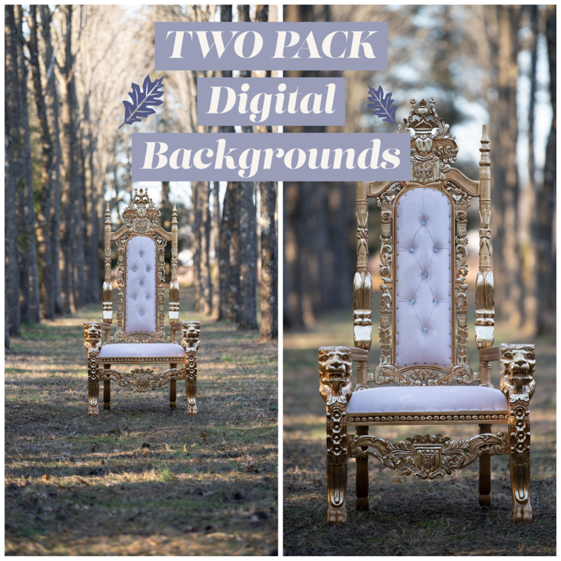 Golden Throne in Enchanted Forest TWO PACK- Throne in Enchanted Forest - Royal Chair King Queen Throne Chair - Natural Digital Background JPG File - Portraits Digital Background