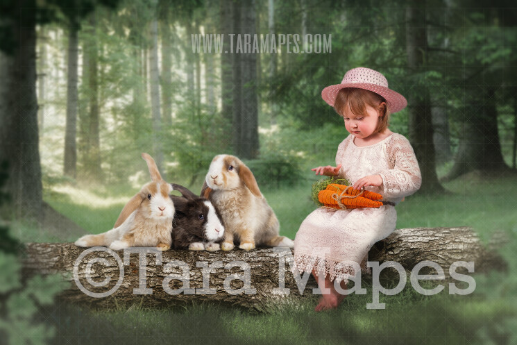 Easter Bunnies on Spring Log in Forest - Easter Rabbits JPG file - Photoshop Digital Background / Backdrop