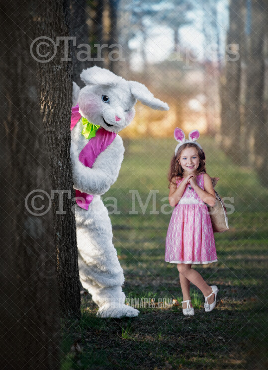 Easter Bunny Peeking Around Tree - Easter Rabbit in Enchanted Forest JPG file - Photoshop Digital Background / Backdrop