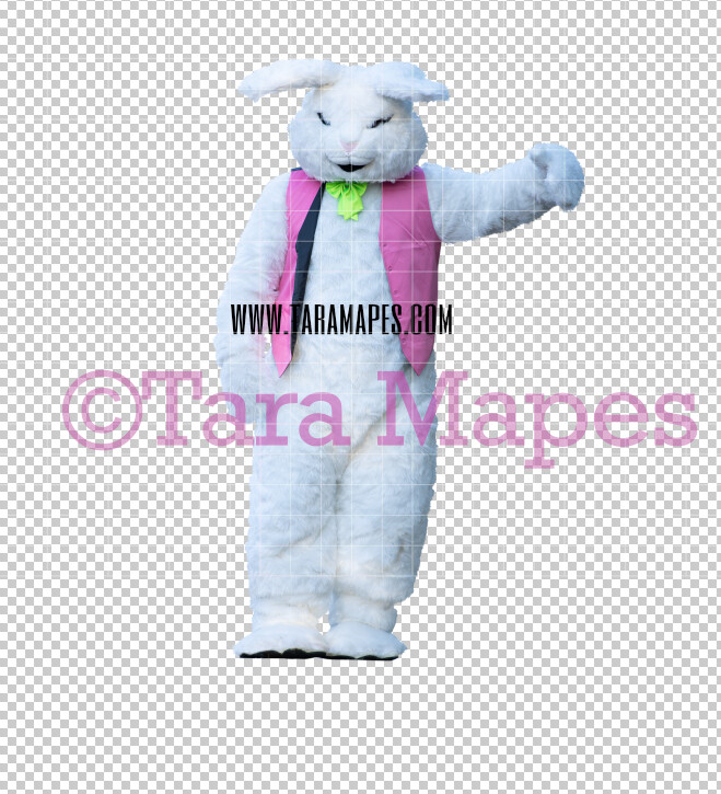 Easter Bunny -  Easter Bunny Clip Art - Easter Bunny Rabbit Cut Out  - Easter Overlay - Bunny PNG - File 2825