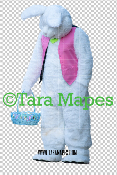 Easter Bunny -  Easter Bunny Clip Art - Easter Bunny Rabbit Cut Out  - Easter Overlay - Bunny PNG - File 2854