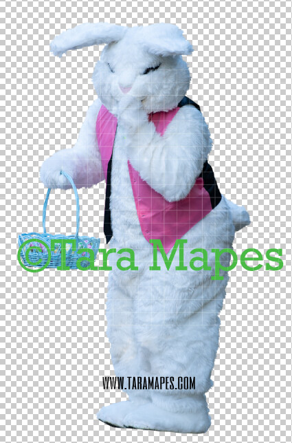 Easter Bunny -  Easter Bunny Clip Art - Easter Bunny Rabbit Cut Out  - Easter Overlay - Bunny PNG - File 2857