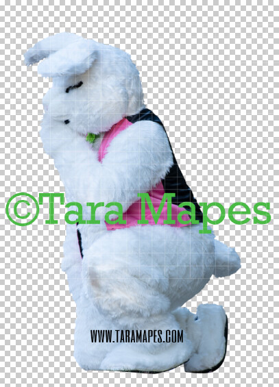 Easter Bunny -  Easter Bunny Clip Art - Easter Bunny Rabbit Cut Out  - Easter Overlay - Bunny PNG - File 2843