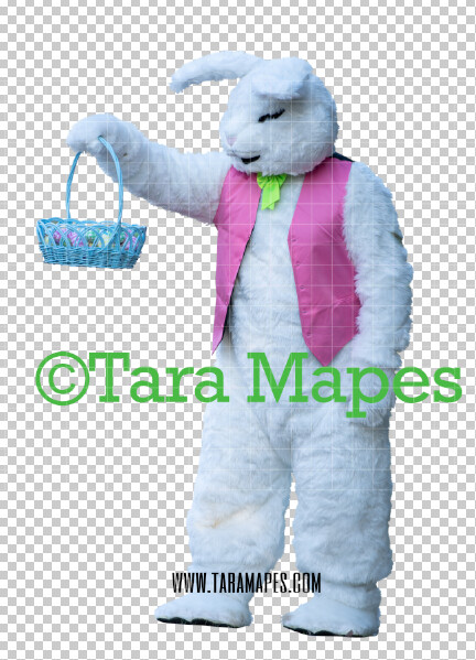 Easter Bunny -  Easter Bunny Clip Art - Easter Bunny Rabbit Cut Out  - Easter Overlay - Bunny PNG - File 2859