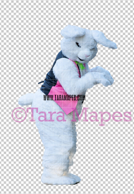Easter Bunny -  Easter Bunny Clip Art - Easter Bunny Rabbit Cut Out  - Easter Overlay - Bunny PNG - File 2831
