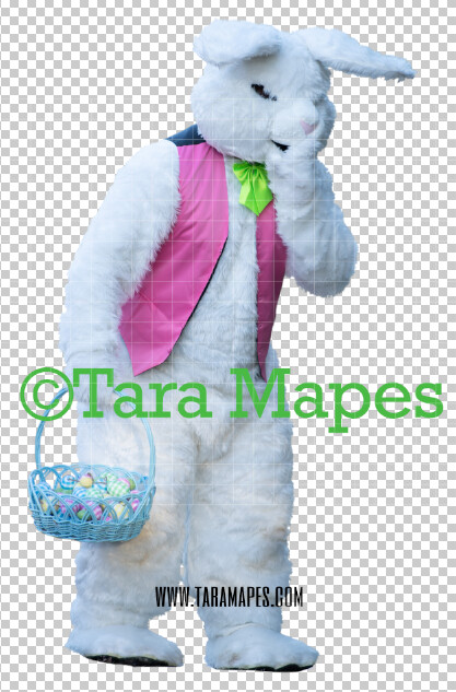 Easter Bunny -  Easter Bunny Clip Art - Easter Bunny Rabbit Cut Out  - Easter Overlay - Bunny PNG - File 2851
