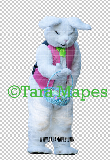Easter Bunny -  Easter Bunny Clip Art - Easter Bunny Rabbit Cut Out  - Easter Overlay - Bunny PNG - File 2852
