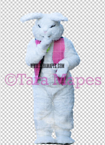 Easter Bunny -  Easter Bunny Clip Art - Easter Bunny Rabbit Cut Out  - Easter Overlay - Bunny PNG - File 2836