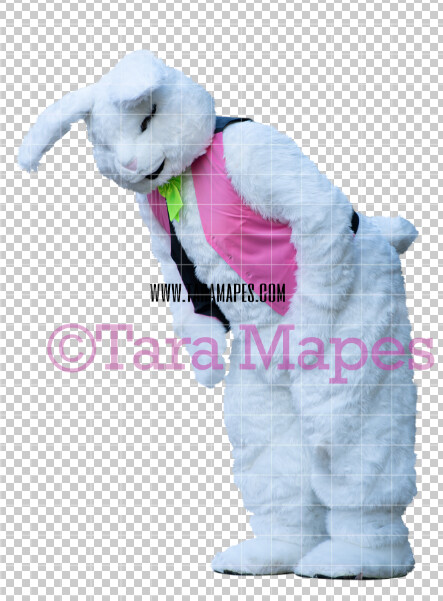 Easter Bunny -  Easter Bunny Clip Art - Easter Bunny Rabbit Cut Out  - Easter Overlay - Bunny PNG - File 2838