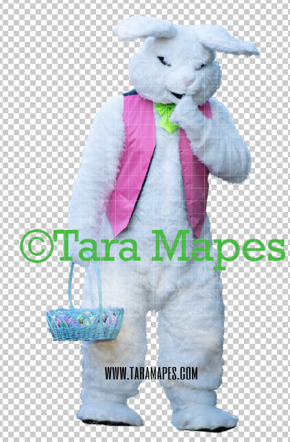 Easter Bunny -  Easter Bunny Clip Art - Easter Bunny Rabbit Cut Out  - Easter Overlay - Bunny PNG - File 2850
