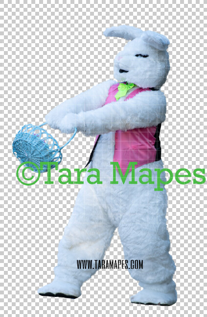 Easter Bunny -  Easter Bunny Clip Art - Easter Bunny Rabbit Cut Out  - Easter Overlay - Bunny PNG - File 2861