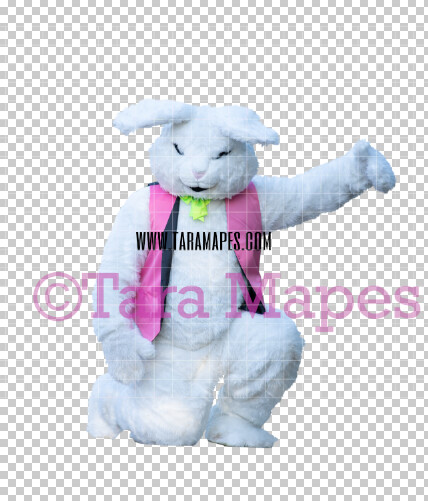 Easter Bunny -  Easter Bunny Clip Art - Easter Bunny Rabbit Cut Out  - Easter Overlay - Bunny PNG - File 2826