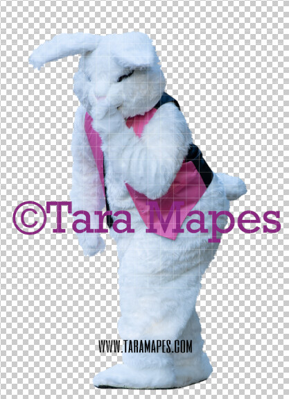 Easter Bunny -  Easter Bunny Clip Art - Easter Bunny Rabbit Cut Out  - Easter Overlay - Bunny PNG - File 2842