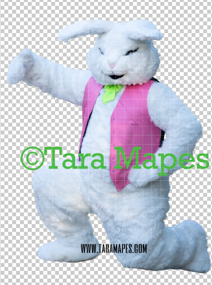 Easter Bunny -  Easter Bunny Clip Art - Easter Bunny Rabbit Cut Out  - Easter Overlay - Bunny PNG - File 2849