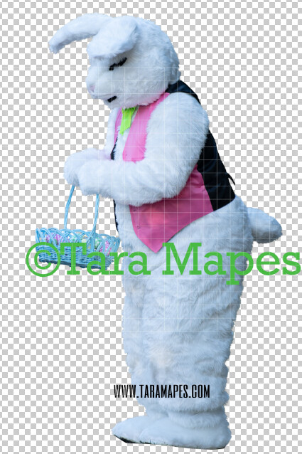Easter Bunny -  Easter Bunny Clip Art - Easter Bunny Rabbit Cut Out  - Easter Overlay - Bunny PNG - File 2855