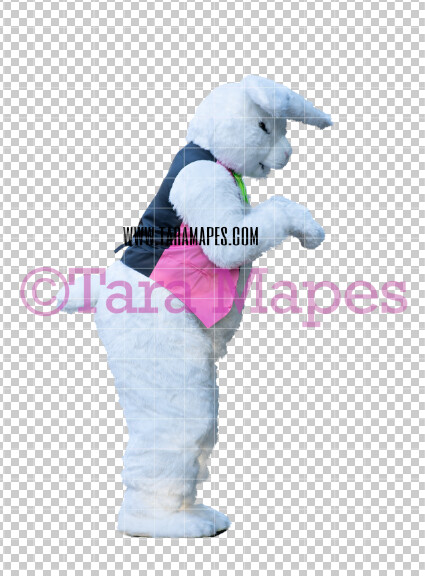 Easter Bunny -  Easter Bunny Clip Art - Easter Bunny Rabbit Cut Out  - Easter Overlay - Bunny PNG - File 2830