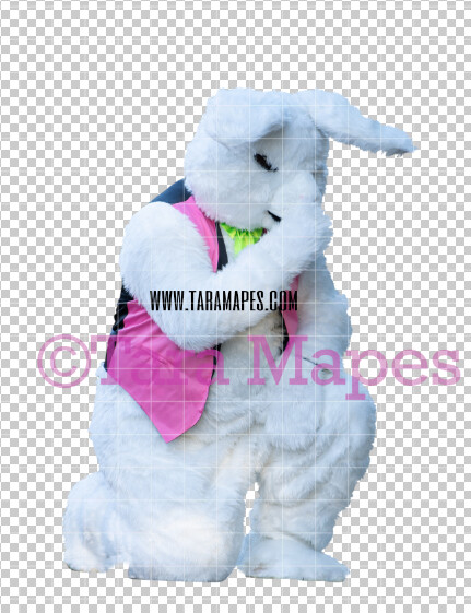 Easter Bunny -  Easter Bunny Clip Art - Easter Bunny Rabbit Cut Out  - Easter Overlay - Bunny PNG - File 2827