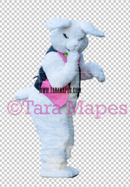 Easter Bunny -  Easter Bunny Clip Art - Easter Bunny Rabbit Cut Out  - Easter Overlay - Bunny PNG - File 2832