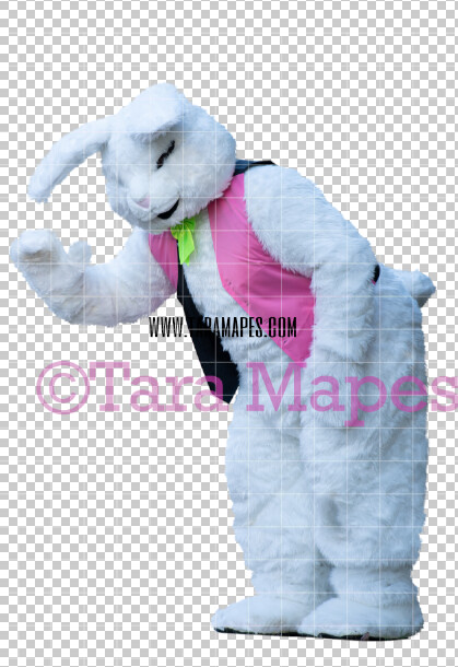 Easter Bunny -  Easter Bunny Clip Art - Easter Bunny Rabbit Cut Out  - Easter Overlay - Bunny PNG - File 2839