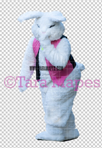 Easter Bunny -  Easter Bunny Clip Art - Easter Bunny Rabbit Cut Out  - Easter Overlay - Bunny PNG - File 2840