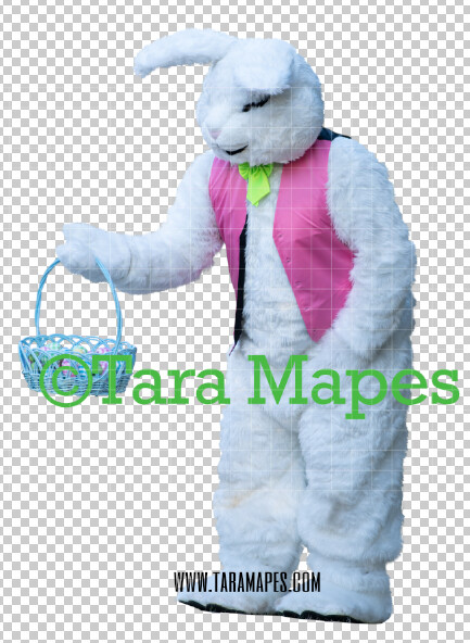 Easter Bunny -  Easter Bunny Clip Art - Easter Bunny Rabbit Cut Out  - Easter Overlay - Bunny PNG - File 2853
