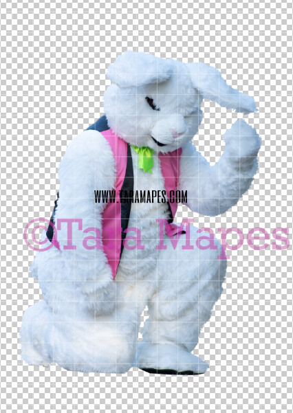 Easter Bunny -  Easter Bunny Clip Art - Easter Bunny Rabbit Cut Out  - Easter Overlay - Bunny PNG - File 2828