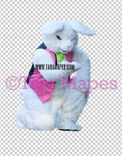 Easter Bunny -  Easter Bunny Clip Art - Easter Bunny Rabbit Cut Out  - Easter Overlay - Bunny PNG - File 2829