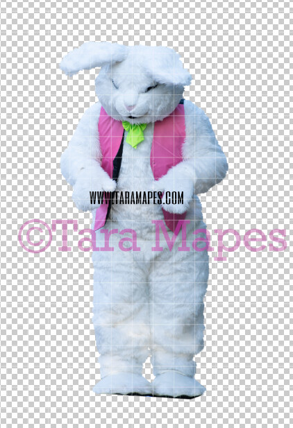 Easter Bunny -  Easter Bunny Clip Art - Easter Bunny Rabbit Cut Out  - Easter Overlay - Bunny PNG - File 2834