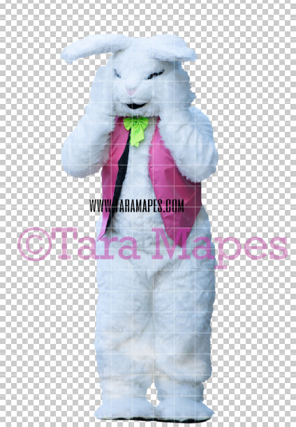 Easter Bunny -  Easter Bunny Clip Art - Easter Bunny Rabbit Cut Out  - Easter Overlay - Bunny PNG - File 2837