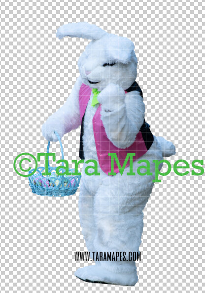 Easter Bunny -  Easter Bunny Clip Art - Easter Bunny Rabbit Cut Out  - Easter Overlay - Bunny PNG - File 2858