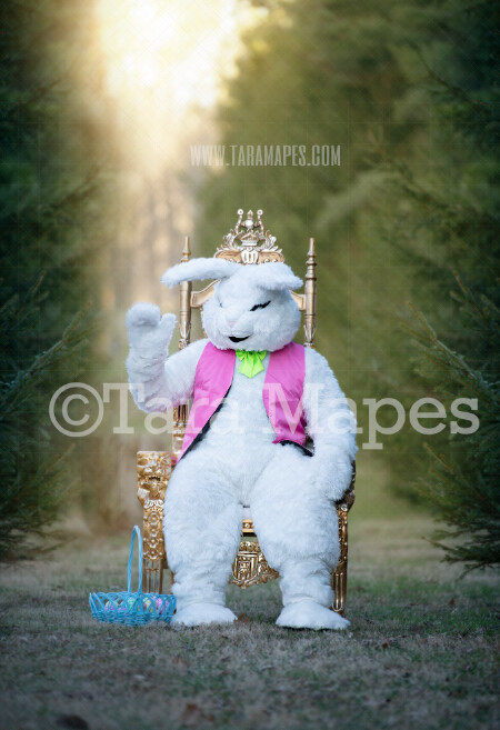 Easter Bunny Sitting in Throne - Easter Rabbit in Enchanted Forest JPG file - Photoshop Digital Background / Backdrop