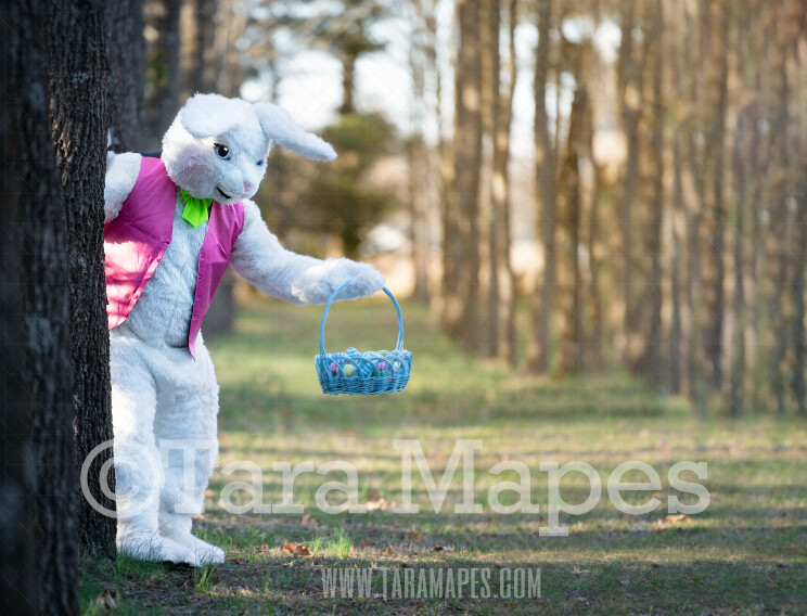 Easter Bunny Peeking Behind Tree with Basket - Easter Rabbit in Enchanted Forest JPG file - Photoshop Digital Background / Backdrop