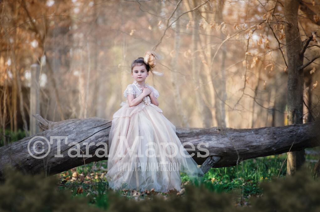 Spring Log in Forest - Tree Log in Woods - Creamy Background  JPG file - Photoshop Digital Background / Backdrop