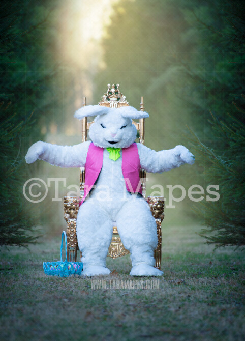 Easter Bunny Sitting in Throne with Arms Out- Easter Rabbit in Enchanted Forest JPG file - Photoshop Digital Background / Backdrop
