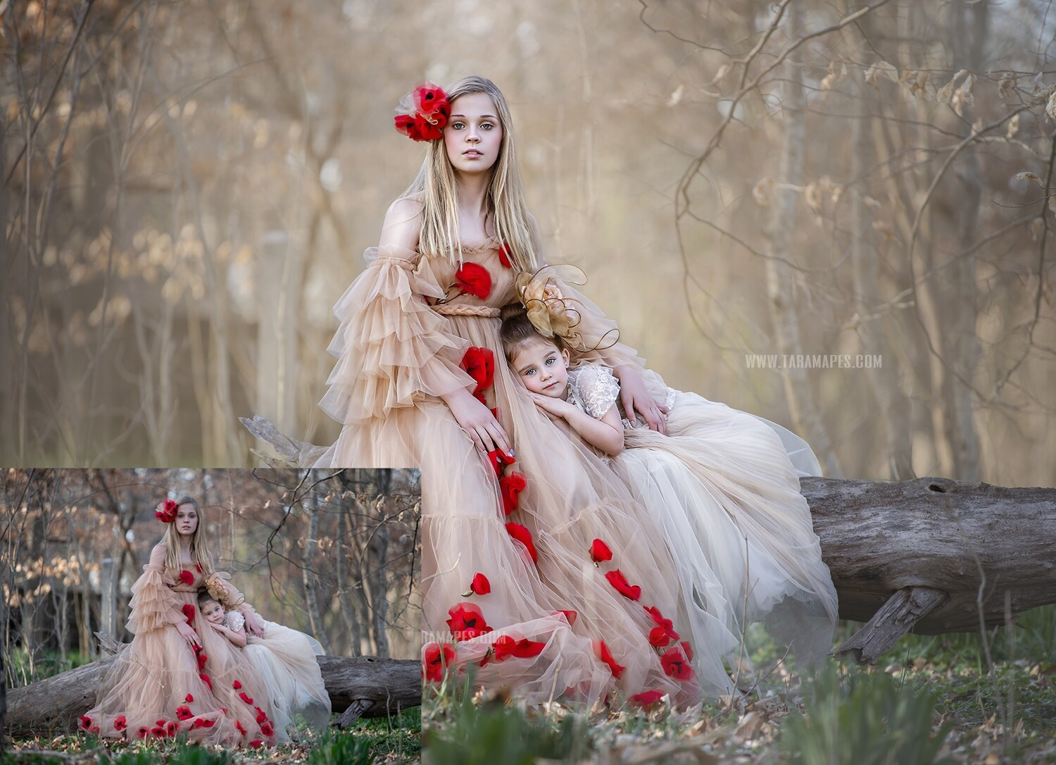 Spring's Daughters - Fine Art Facial Action Workflow Set Included- Fine Art Tutorial by Tara Mapes