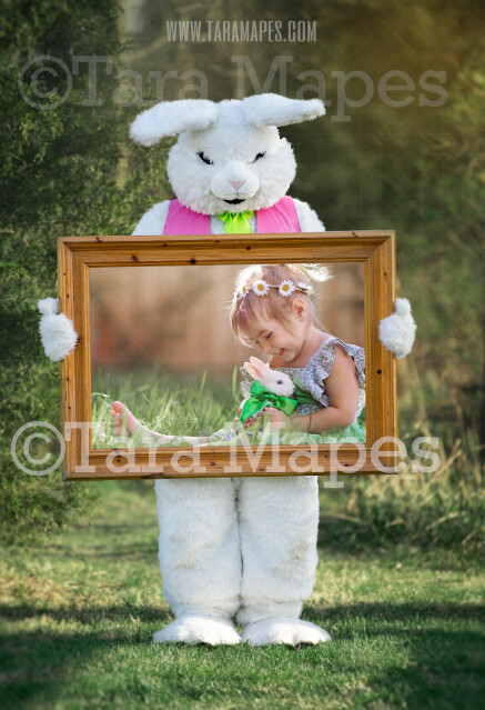 Easter Bunny Frame - Easter Bunny Holding a Frame (file3) - Fun Easter Digital - JPG file - Photoshop Digital Background / Backdrop