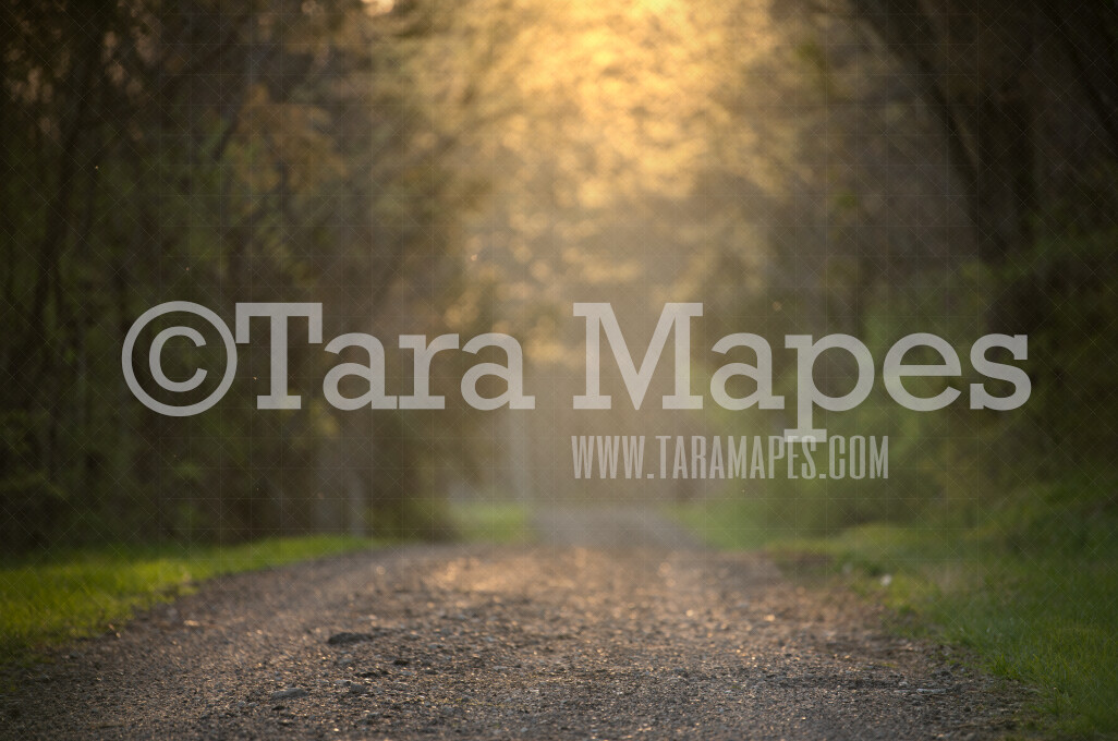 Glowing Path - Spring Path with Glowing Sun - Sunset on dirt road  - Digital Background by Tara Mapes