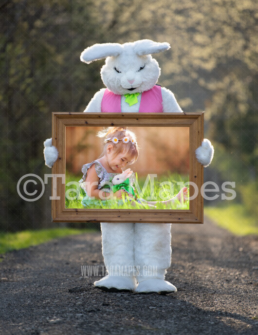 Easter Bunny Frame - Easter Bunny Holding a Frame (file6) - Fun Easter Digital - JPG file - Photoshop Digital Background / Backdrop