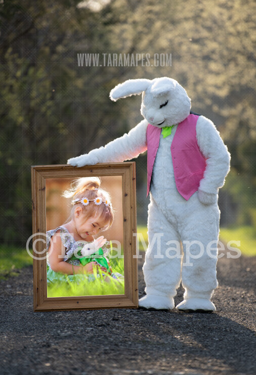 Easter Bunny Frame - Easter Bunny Holding a Frame (file7) - Fun Easter Digital - JPG file - Photoshop Digital Background / Backdrop