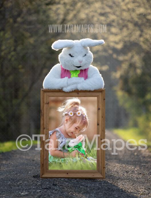 Easter Bunny Frame - Easter Bunny Holding a Frame (file8) - Fun Easter Digital - JPG file - Photoshop Digital Background / Backdrop