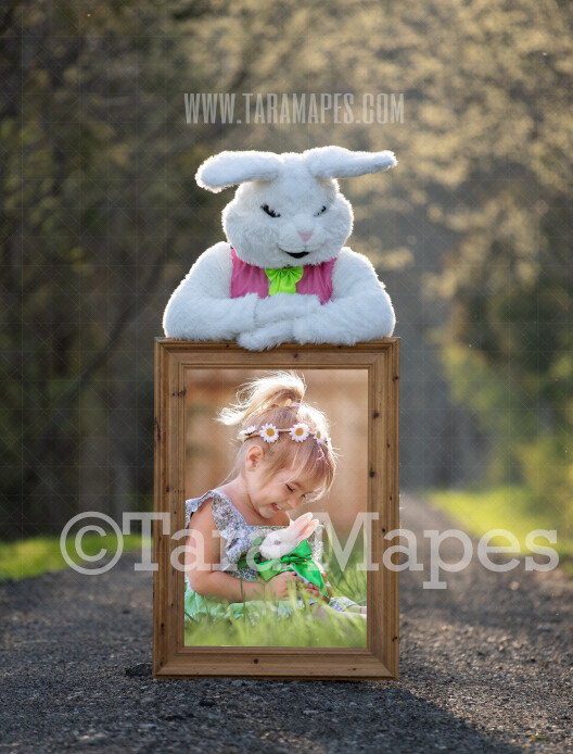 Easter Bunny Frame - Easter Bunny Holding a Frame (file8) - Fun Easter Digital - JPG file - Photoshop Digital Background / Backdrop