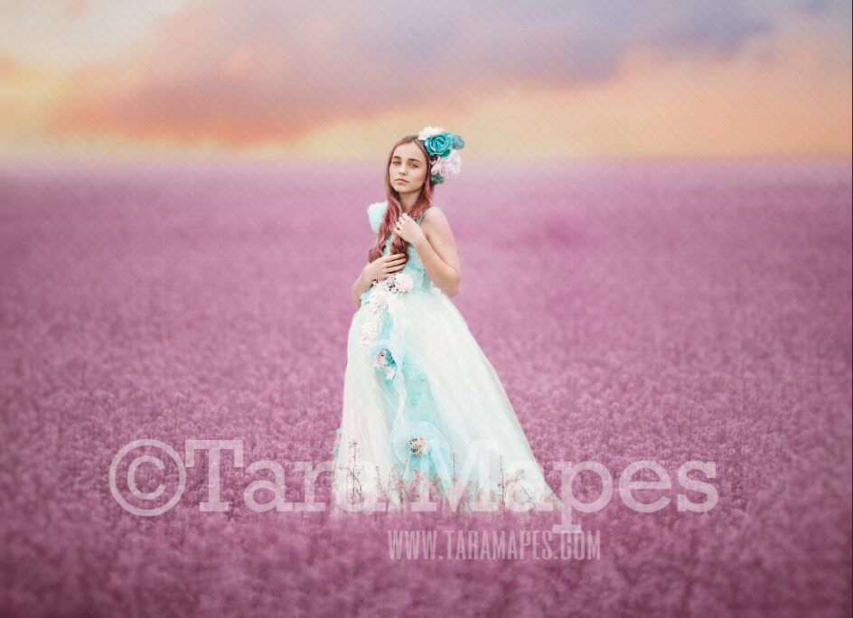 Field of Pink Flowers - Violet Flowers - Field of Flowers - Field of Heather- JPG file - Photoshop Digital Background / Backdrop