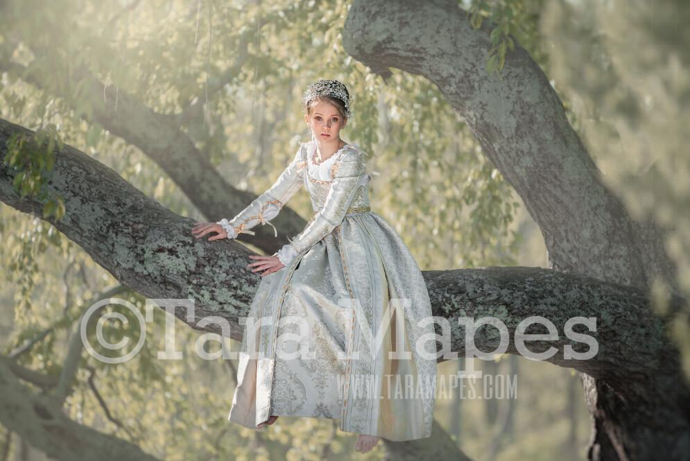 Sitting Tree- Whimsical Tree Branch- JPG file - Photoshop Digital Background / Backdrop