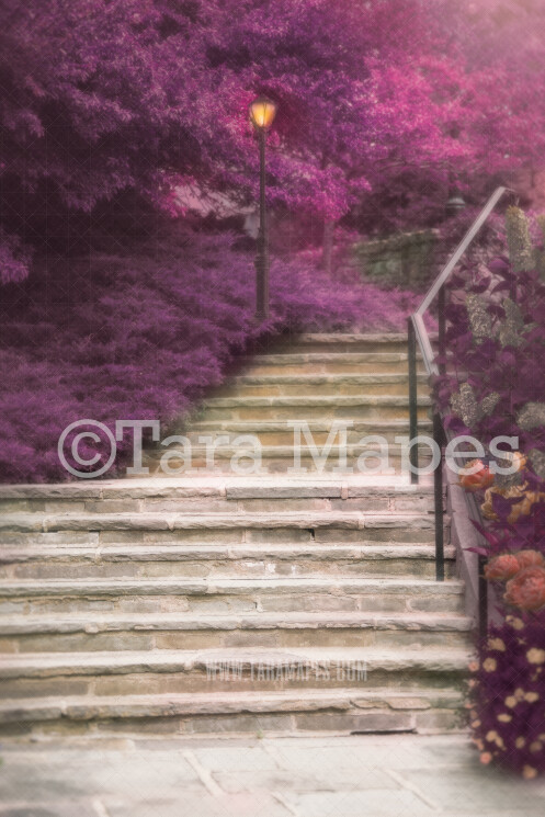 Magical Fairytale stairs- Castle Stairs - Soft Creamy Background - JPG file - Photoshop Digital Background / Backdrop