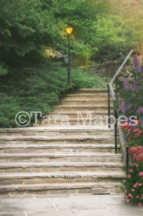 Magical Fairytale stairs- Castle Stairs - Diffused Soft Creamy Background - JPG file - Photoshop Digital Background / Backdrop