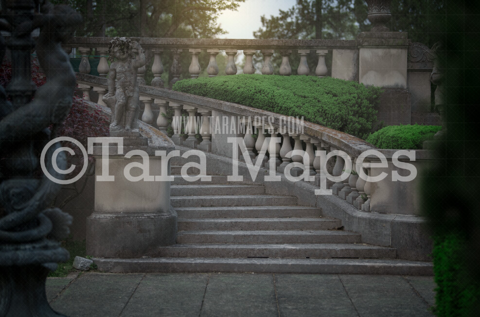 Castle staircase - Princess  stairs- Castle Stairs in a Garden - Soft Creamy Background - JPG file - Photoshop Digital Background /  Backdrop