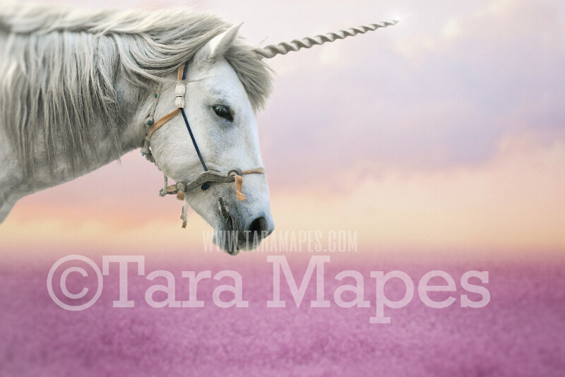 Unicorn in Field of Flowers Cropped Up Close - Field of Heather with Horse Unicorn JPG Digital Background Backdrop