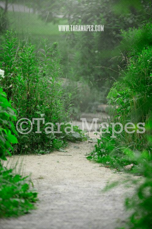 Garden Path Digital Background - Garden Path - Digital Backdrop  for Portraits by Tara Mapes