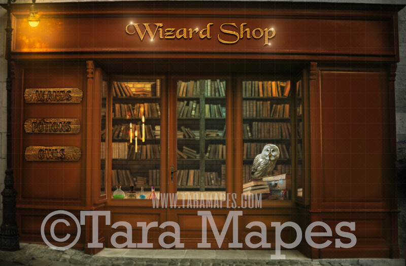Wizard Shop - Magic Shop - Shop for Wands Potions and Owls - Digital Background / Backdrop